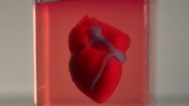 Photo of Scientists print first 3D heart using patient's biological materials