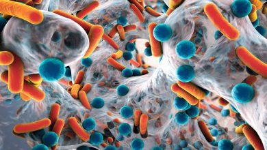 Photo of Bacterial enzyme could become a new target for antibiotics