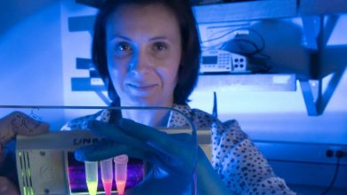 Photo of Coronavirus testing kits to be developed using RNA imaging technology